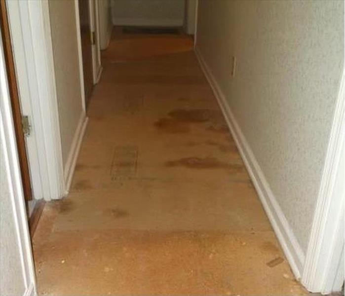 Water Damage to a Hallway in Colorado Springs