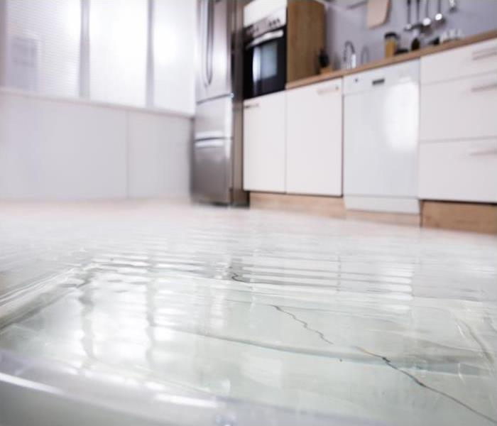 Water Damage Cleaning Water Damage To Carpeted Areas Of Your Colorado Springs Residence