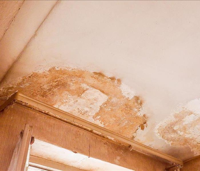 Water Damage The Need for Rapid Water Removal is Critical