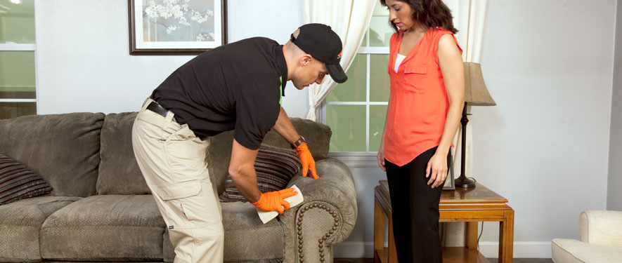 Colorado Springs, CO carpet upholstery cleaning