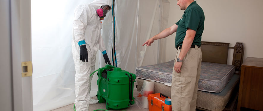 Colorado Springs, CO mold removal process